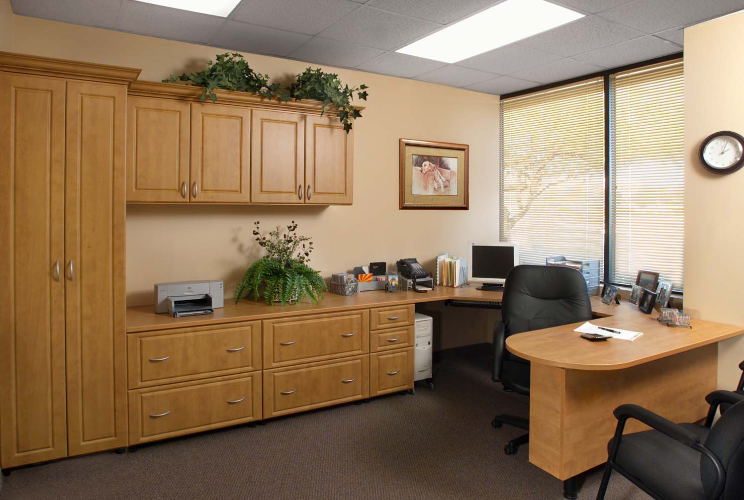home office cabinets & office organization design in michigan