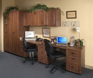 Warm-Cognac-Double-Hall-Office-in-Raised-Panel
