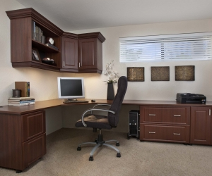 Mahogany-Office-in-Raised-Panel-Wide-Shot-Eric-2011